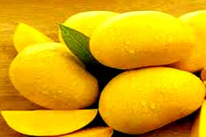 Disadvantages of Eating Mango